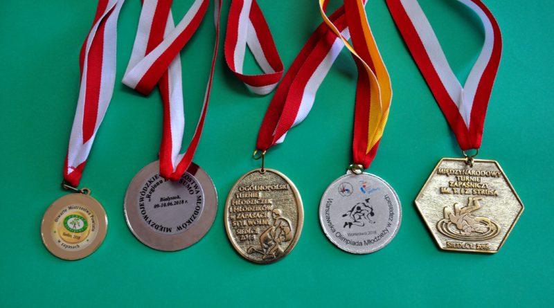 B. Skłodowski z kl. VIIb – zdobywca medali na turniejach rangi powiatowej, wojewódzkiej oraz międzynarodowej.